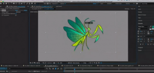 Butterfly animation in software